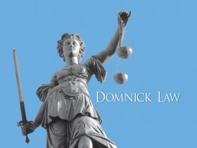 About Domnick Law