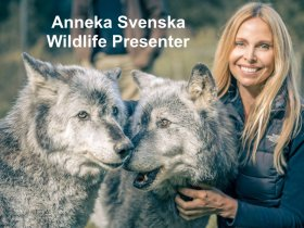 Anneka Svenska Morning TV