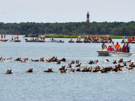 Chincoteague Island Vacation Cottages