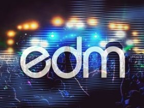 Electro Dance Mixes