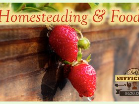 Homesteading Videos