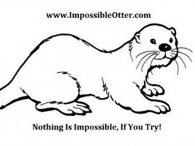 Impossible Otter Video Stories
