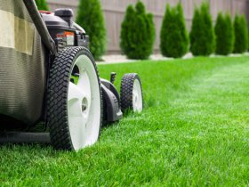 Lawn Mowing Businesses for sale
