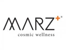 Marz Labs