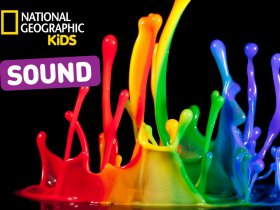 Nat Geo Kids Learn About Sound