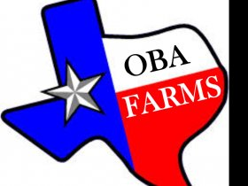 Oba Farms
