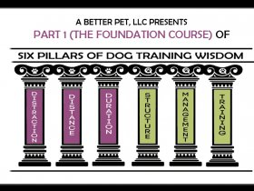The Six Pillars of Dog Training Wisdom: