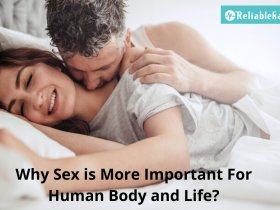why sex is more important in humans lif