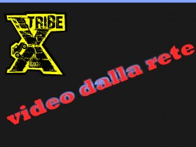 XTRIBE VIDEO DALLA RETE